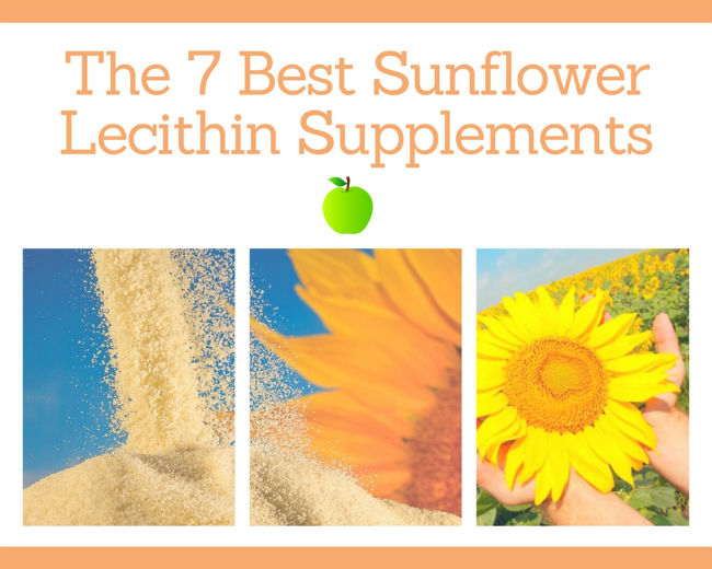 Sunflower Lecithin Supplements