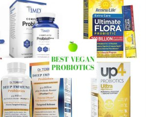 Vegan Probiotics: The Top 7 Probiotics for Vegans