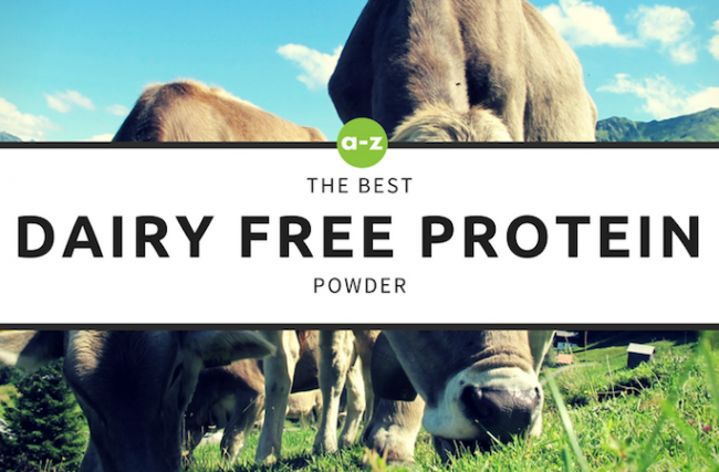 The Top 5 Dairy Free Protein Powders in the Market